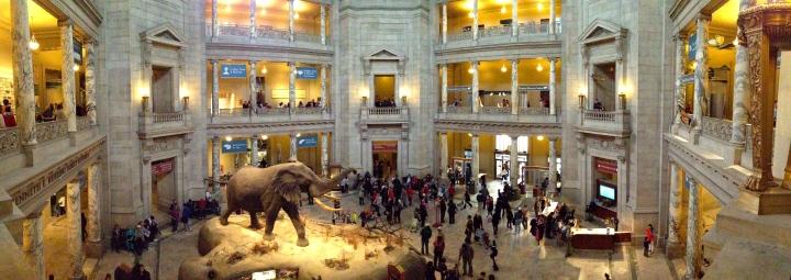 National_Museum_of_Natural_History_Rotunda_pano